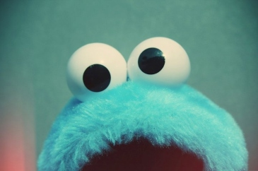 blue-cookie-monster-girl-junel-photography-vintage-Favim.com-83019